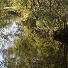 Rivière Noire 1