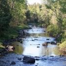 Rivière Noire 2